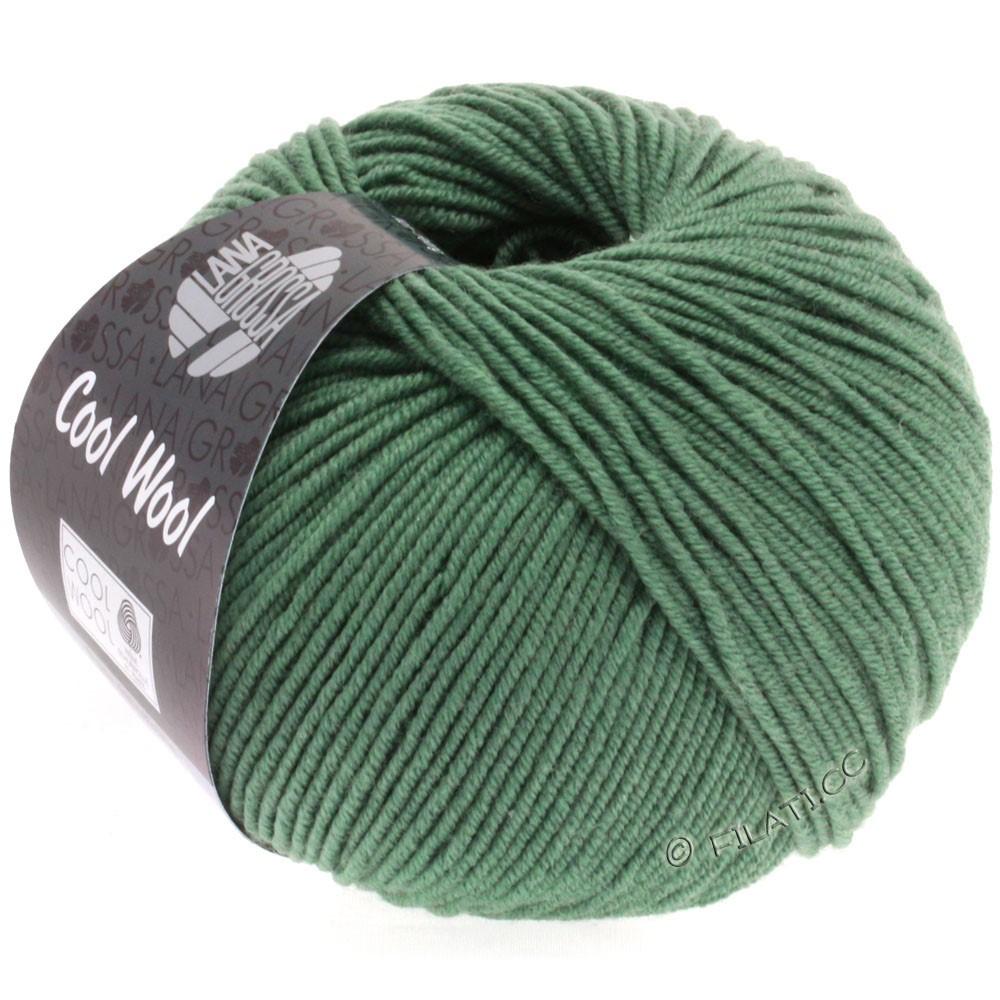 | 2021-dunkles Graugrün