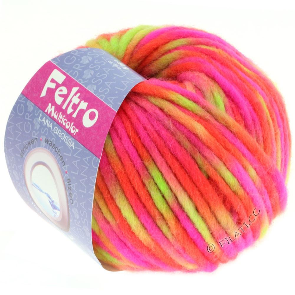 Lana Grossa FELTRO Multicolor